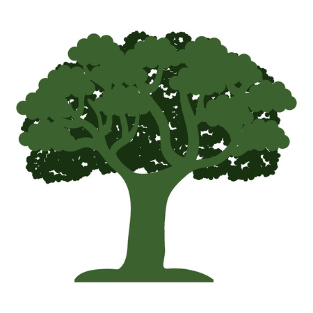 tree isolated: tree isolated  design, vector illustration eps10 graphic Illustration