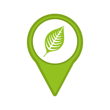 leafs: leafs plant isolated icon design, vector illustration  graphic Illustration