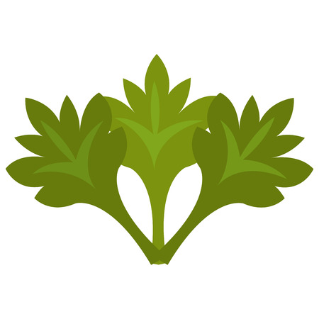 mexican food plate: green tree leaves front view over isolated background,vector illustration