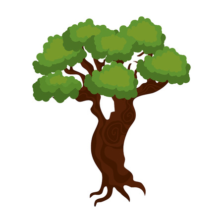 leafy: large and leafy tree isolated icon design, vector illustration  graphic Illustration