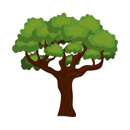 large and leafy tree isolated icon design, vector illustration  graphic Illustration