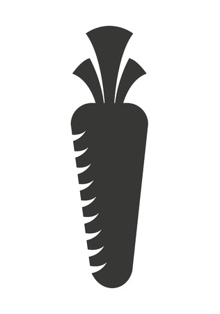 carrot isolated: fresh carrot  isolated icon design, vector illustration  graphic
