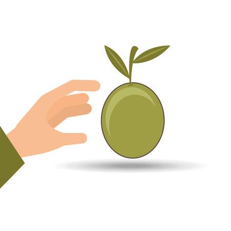 mediterranean diet: olive oil design, vector illustration eps10 graphic