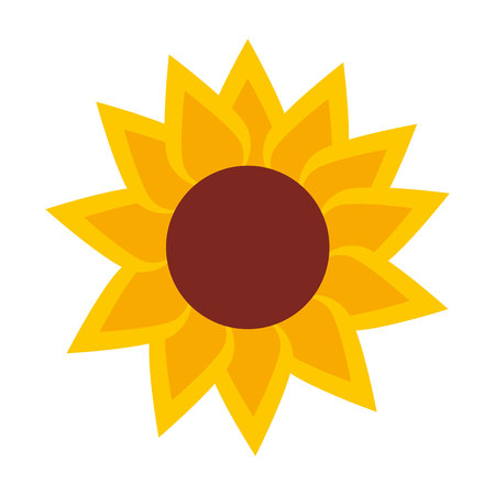 sunflower isolated: sunflower isolated icon design, vector illustration  graphic