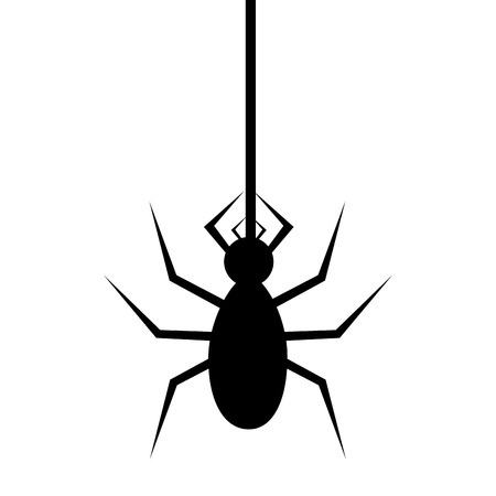 thomisidae: Spyder in cobweb silhouette icon over white background, vector illustration.