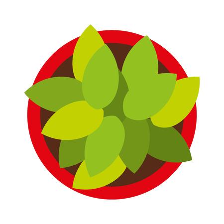 plant pot: plant pot isolated icon design, vector illustration  graphic