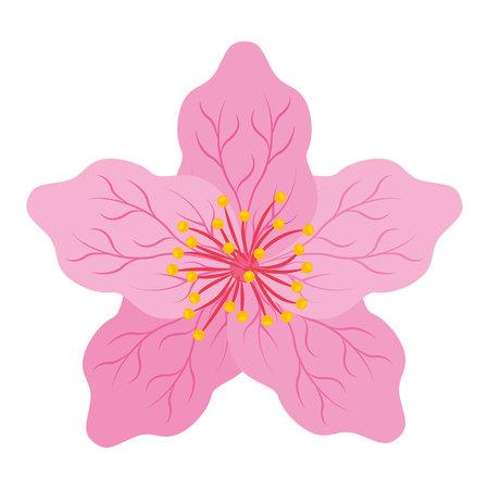 일본 꽃 격리 된 아이콘 디자인, 벡터 그림 그래픽