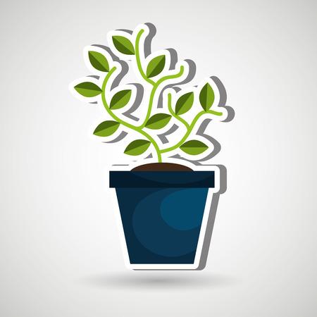 plant pot: plant pot design, vector illustration eps10 graphic