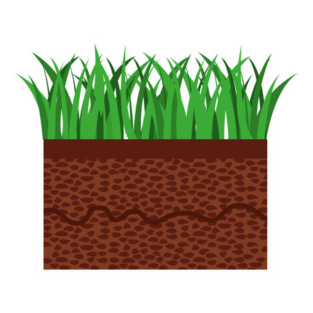terrain: grass and terrain isolated icon design, vector illustration  graphic