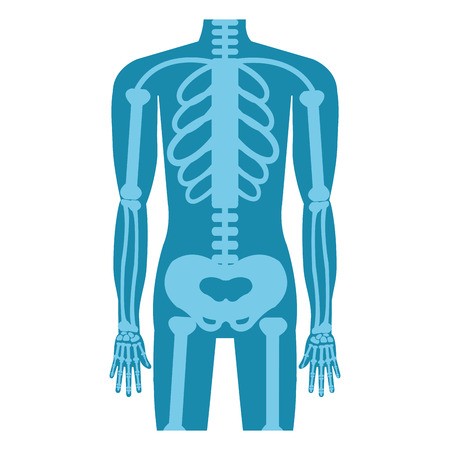radiography: Medical healthcare xray exam isolated flat icon, vector illustration graphic design.