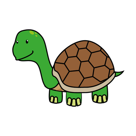 ancient turtles: Tortoise cute pet graphic design, vector illustration isolated icon. Illustration