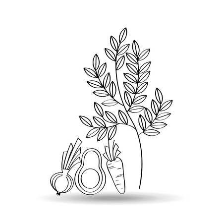 three leaf: three vegetables and fruits with leaf, vector illustration