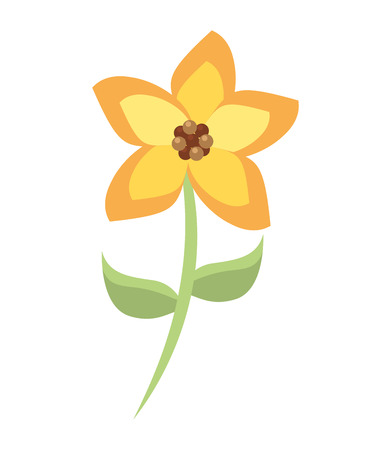 plant delicate: beautiful flower garden isolated icon design, vector illustration  graphic