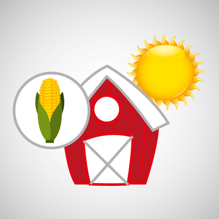 p buildings: farm countryside food corn isolated, vector illustration
