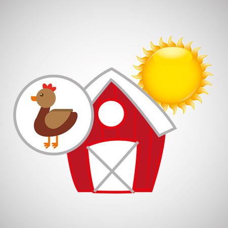 p buildings: farm countryside animal chicken isolated, vector illustration