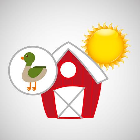 p buildings: farm countryside animal duck isolated, vector illustration