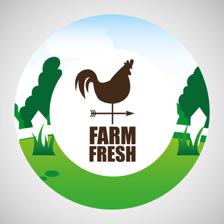 farm countryside weather vane isolated, vector illustration