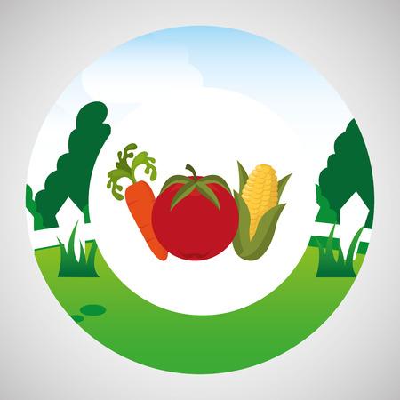 farm countryside vegetable isolated, vector illustration