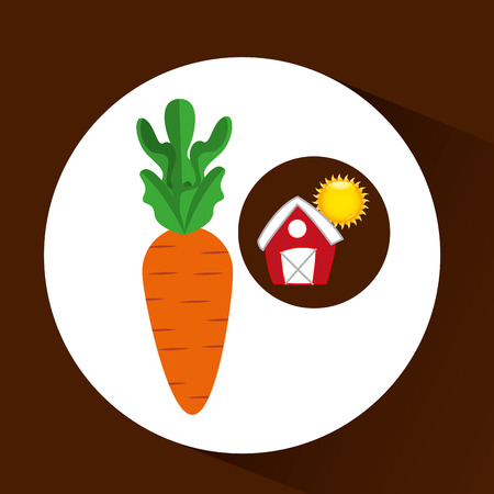 p buildings: farm countryside food carrot isolated, vector illustration