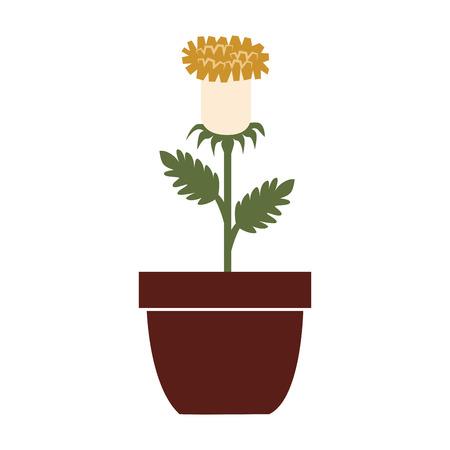 flower vase: Flower vase colorful, isolated flat icon design.