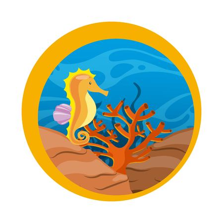 sea horse: Sea life concept represented by sea horse and coral icon over seal stamp. Colorfull illustration. Illustration