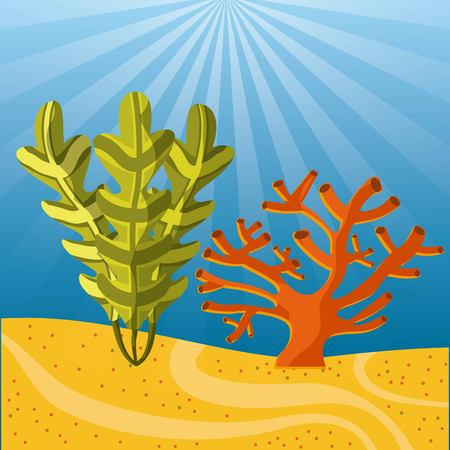 submerged: Sea life concept represented by coral and algae icon. Colorfull illustration.