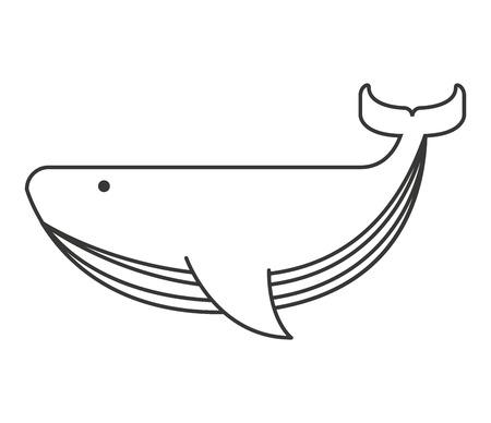 고래 큰 바다 아이콘 벡터 격리 된 그래픽 일러스트