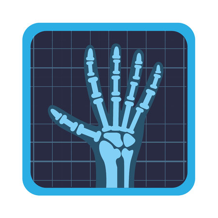 x rays: x rays test icon vector illustration design