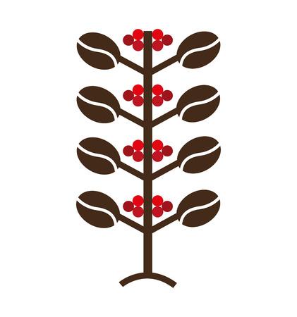 planta de cafe: planta de caf� Icono natural del dise�o de ilustraci�n vectorial Vectores