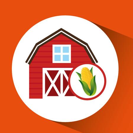 market gardening: corn and sun, organic food icon, vector illustration