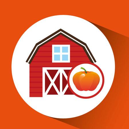 organic pumpkin food in farm icon, vector illustration