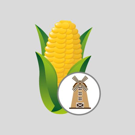 market gardening: windmill and organic corn icon, vector illustration Illustration