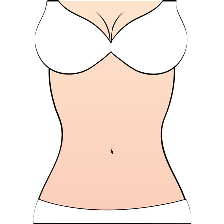 torso: woman figure body slim icon vector illustration graphic Illustration