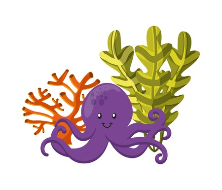 Sea life concept represented by coral, algae and octopus icon. Colorfull and flat illustration.