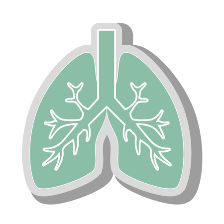 lungs human anatomy, isolated flat icon design