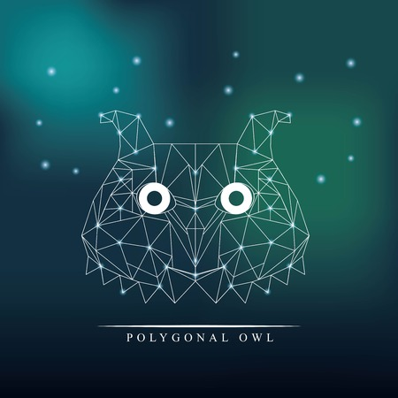nocturnal: owl low poly animal, vector illustration