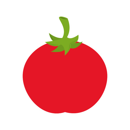 cellulose: tomato vegetable ingredient food recipe nature organic salad vector graphic isolated and flat illustration