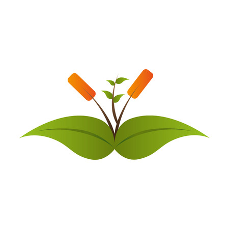 plant growing: plant growing leaves green leaf ecology leaves silhouette vector graphic isolated and flat illustration