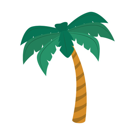 palm summer natural sand beach sea single palmtree vector graphic isolated and flat illustration Illustration