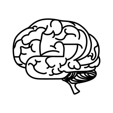 intellectual: brain mind head intellectual think human organ mental vector  illustration isolated