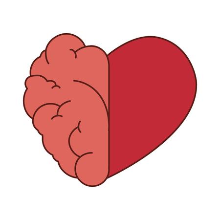 mente humana: amor de cerebro y corazón rojo mente piense la ilustración de órganos humanos mitad del vector aislado