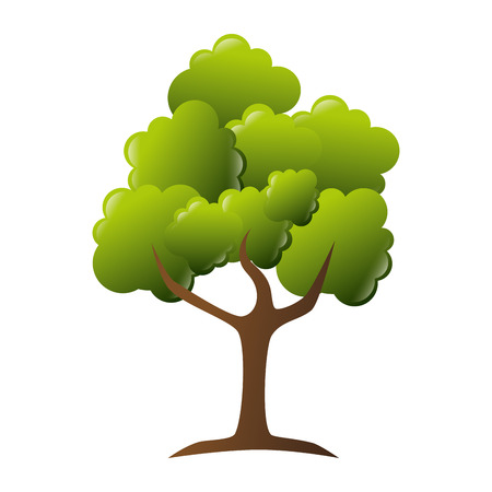 tree leaves trunk branch green nature ecology vector illustration isolated