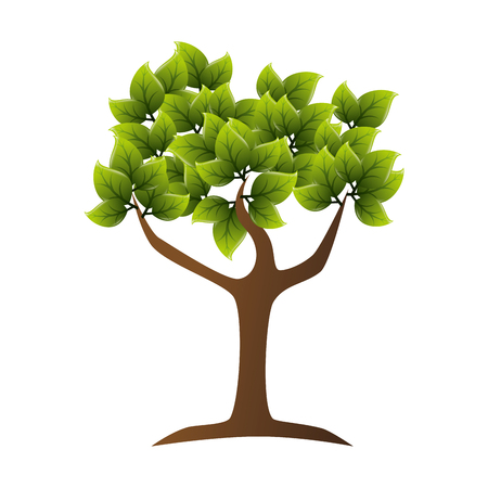 ambience: tree leaves trunk branch green nature ecology vector illustration isolated