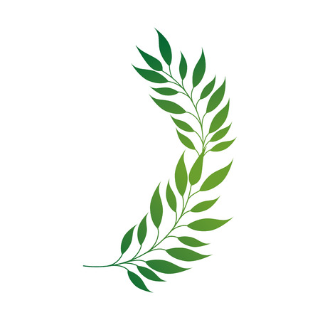 flora: leaf green plant leaves environment flora natural nature vector illustration isolated Illustration