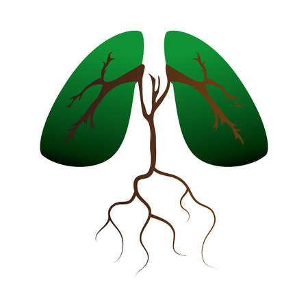 planta con raiz: lung ecology organ human green plant root enviroment vector illustration isolated