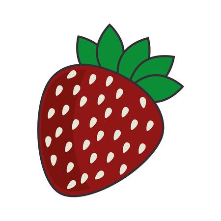 vitamine: strawberry fruit food fresh sweet dessert vitamine vector illustration isolated