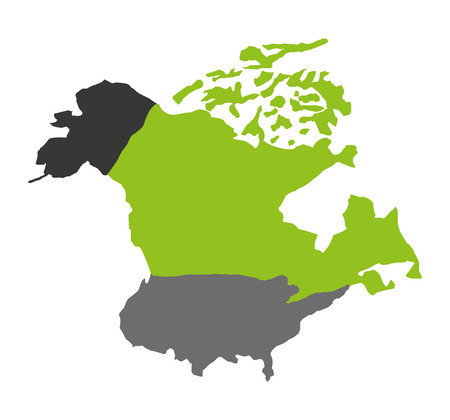 north american: north american map isolated icon vector illustration design