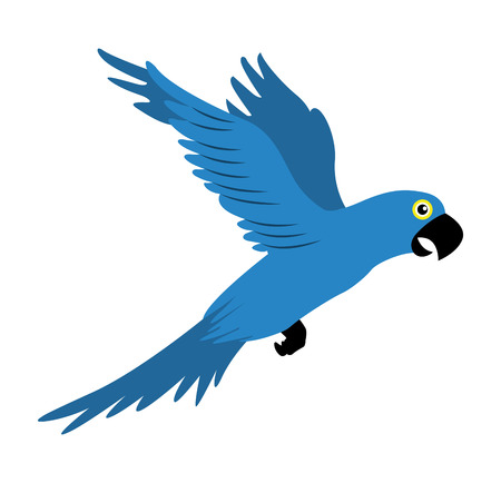 parrot blue flying isolated icon vector illustration design