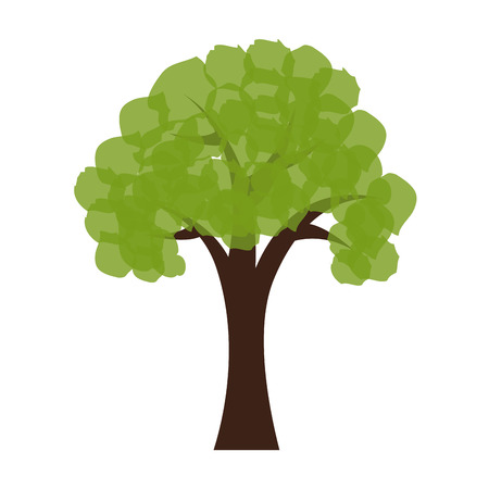 tree leaves trunk branch green nature ecology vector illustration