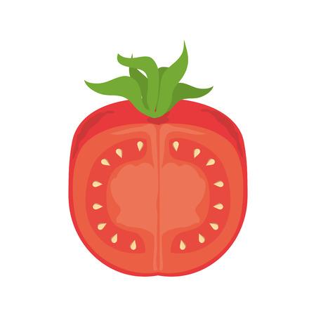 cellulose: tomato vegetable ingredient food recipe nature organic salad vector illustration Illustration